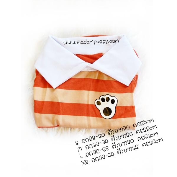 เสื้อโปโลน้องหมา ผ้านิ่ม สีส้ม-ครีม พร้อมส่ง