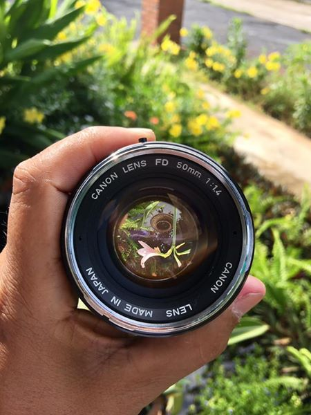 CANON LENS FD 50MM.F1.4 SILVER NOSE FD MOUNT