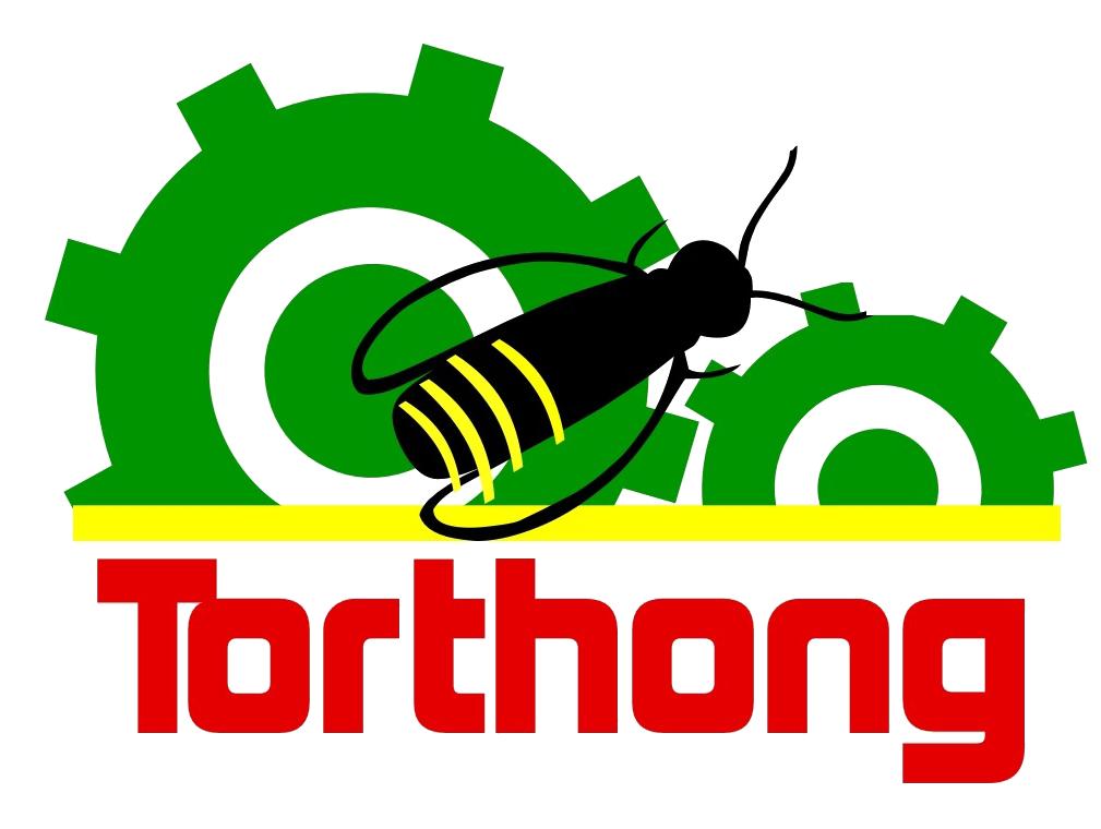 Torthongs