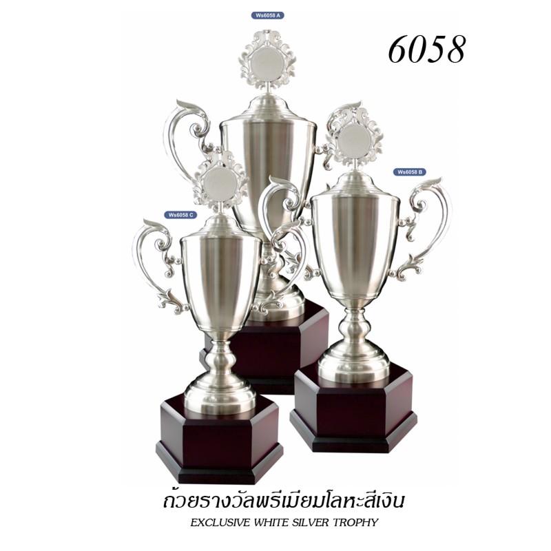 WS-6058