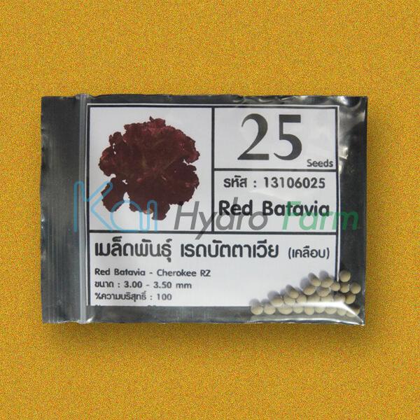 เมล็ดพันธุ์ Red Batavia (เคลือบ) 25 เมล็ด