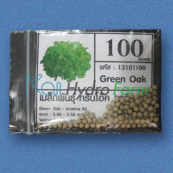 เมล็ดพันธุ์ Green Oak (เคลือบ) 100 เมล็ด