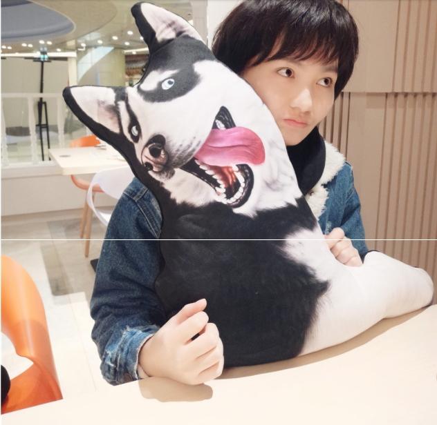 ตุ๊กตาหมอนสุนัขไซบีเรียนฮัสกี้