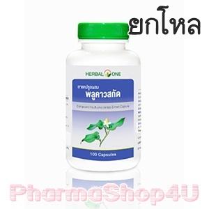 (ยกโหล ราคาส่ง) Herbal One อ้วยอัน แคปซูลผสมพลูคาวสกัด 100 แคปซูล Houttuynia Cordata Extract โรคบิด หัด โรคผิวหนัง ริดสีดวงทวาร หนองใน
