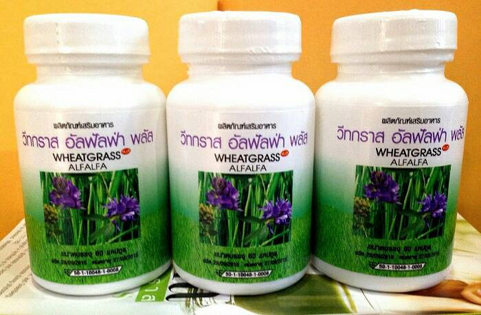 ผักเม็ด อัลฟัลฟ่า วีทกราส alfalfa wheatgrass Plus ผักเม็ด 6 สายพันธุ์ แกรนด์รอยัล เพื่อขับล้างสารพิษออกจากร่างกาย