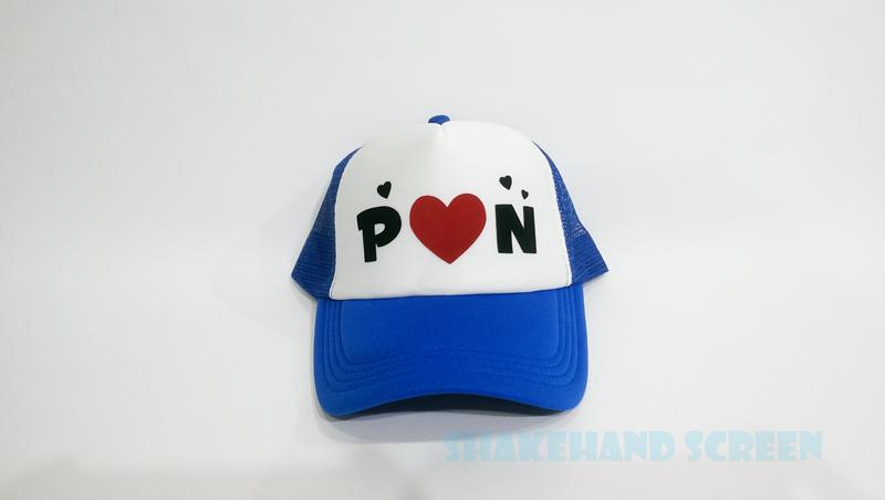 P&N Flex Cap