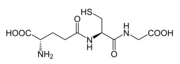 5.กลูต้าไธโอน Glutathione ยับยั้งการสร้างเม็ดสีผิวเมลานิน(เม็ดสีผิวที่ทำให้ผิวหมองคล้ำ) ลดจุดด่างดำ แก้ฝ้า ลดกระ รอยดำ ให้เรียบเนียบและจางหายไป