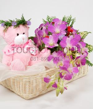 Teddy sweet