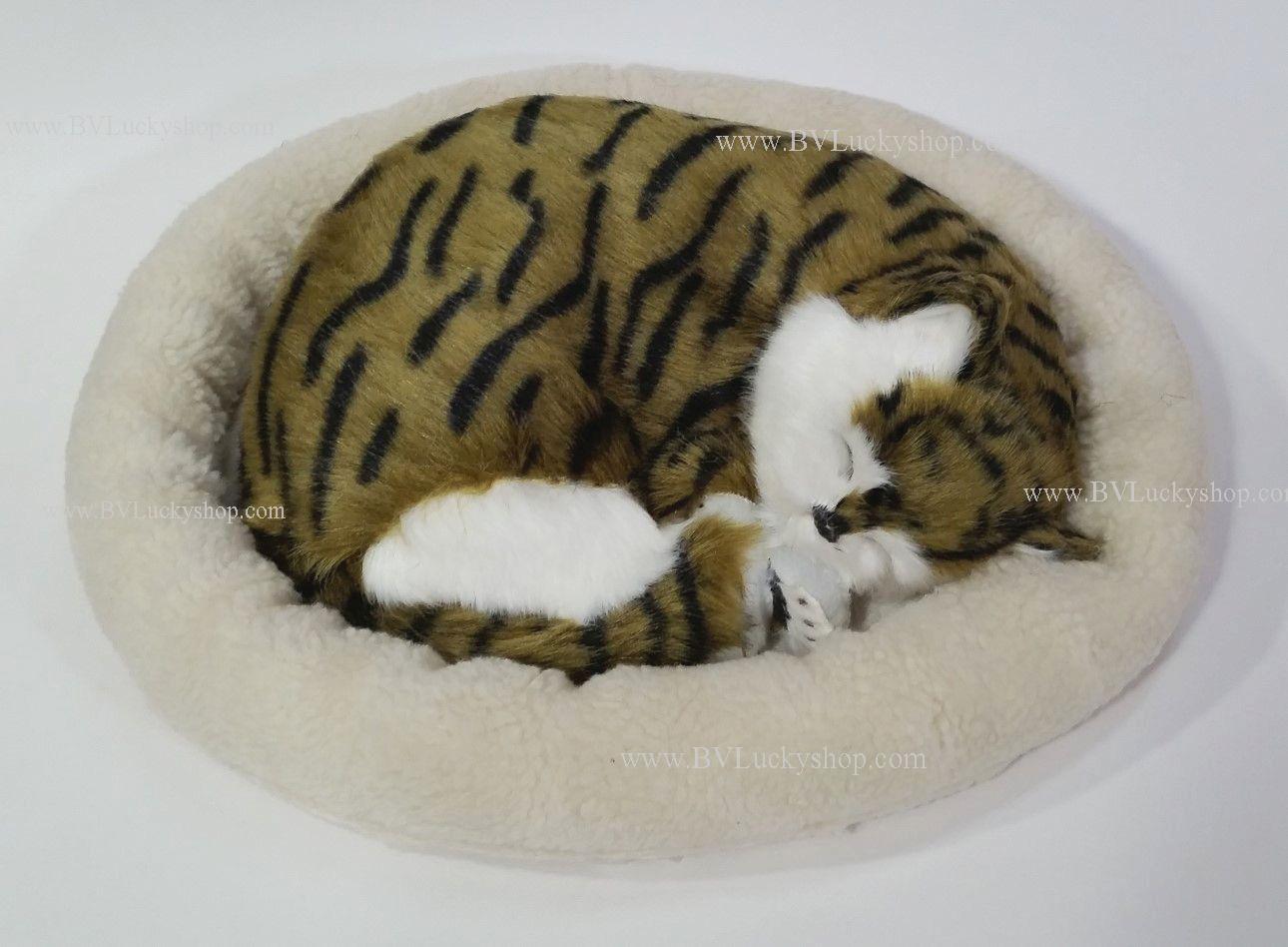 ตุ๊กตาแมว นอนหลับ หายใจได้ (ใส่ถ่าน) สีน้ำตาลลายดำ