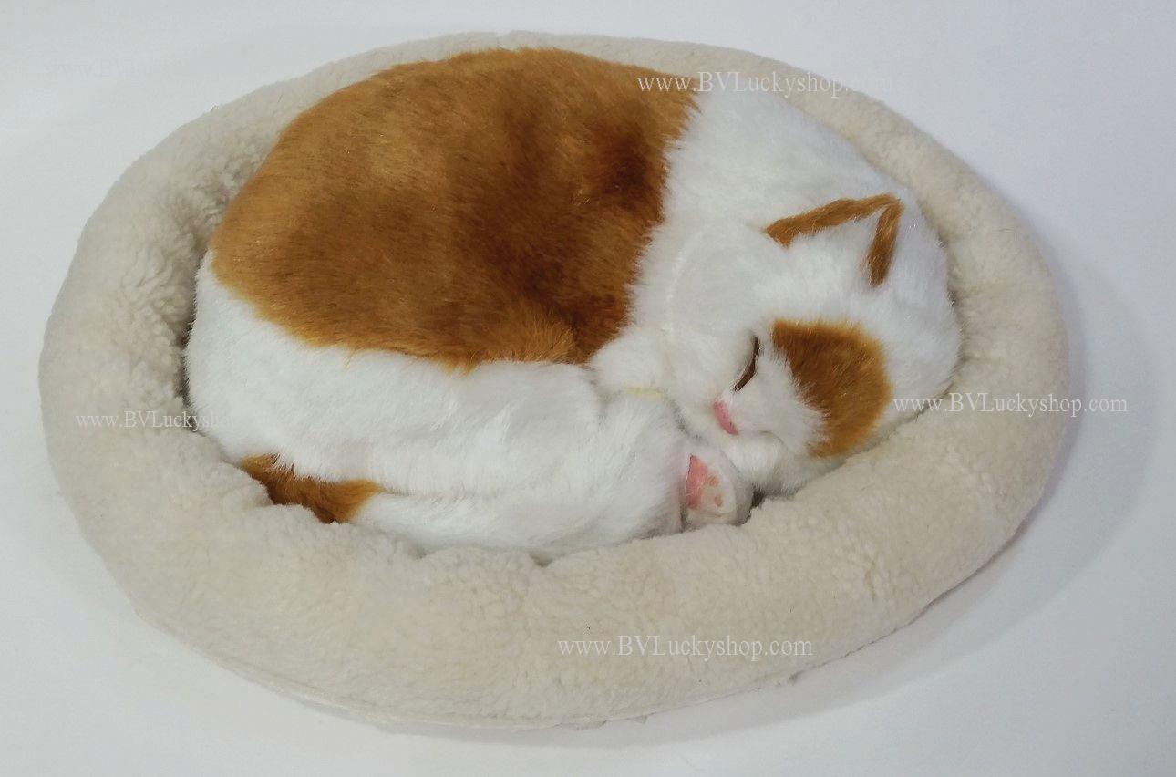 ตุ๊กตาแมว นอนหลับ หายใจได้ (ใส่ถ่าน) สีน้ำตาลขาว-