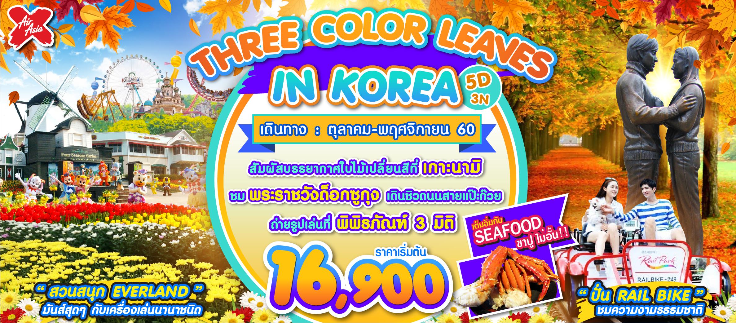 THREE COLOR LEAVES IN KOREA 5D3N (XJ) ต.ค-ธ.ค.60