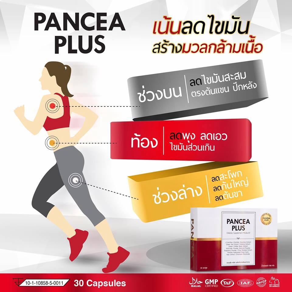 PANCEA PLUS เน้นลดไขมันและช่วยสร้างกล้ามเนื้อ