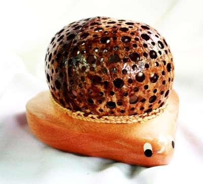 โคมไฟกะลามะพร้าวรูปปลาดาว Coconut Shell Lamp Starfish