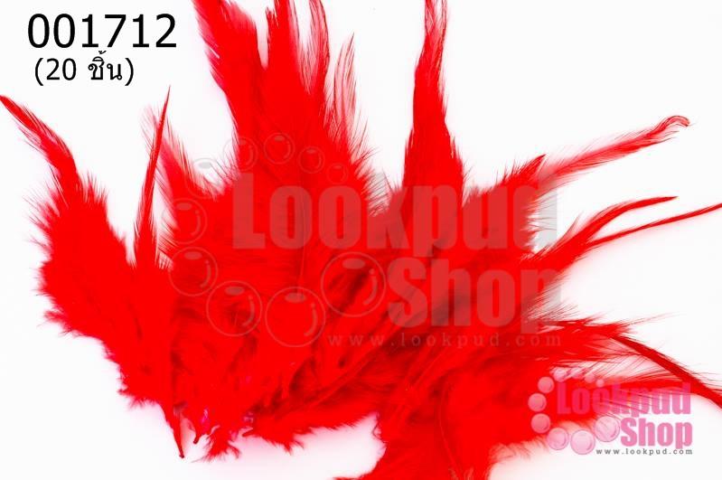 ขนนก สีแดง 20 ชิ้น