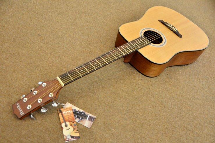 กีต้าร์ Guitar Hawks รุ่น D19M