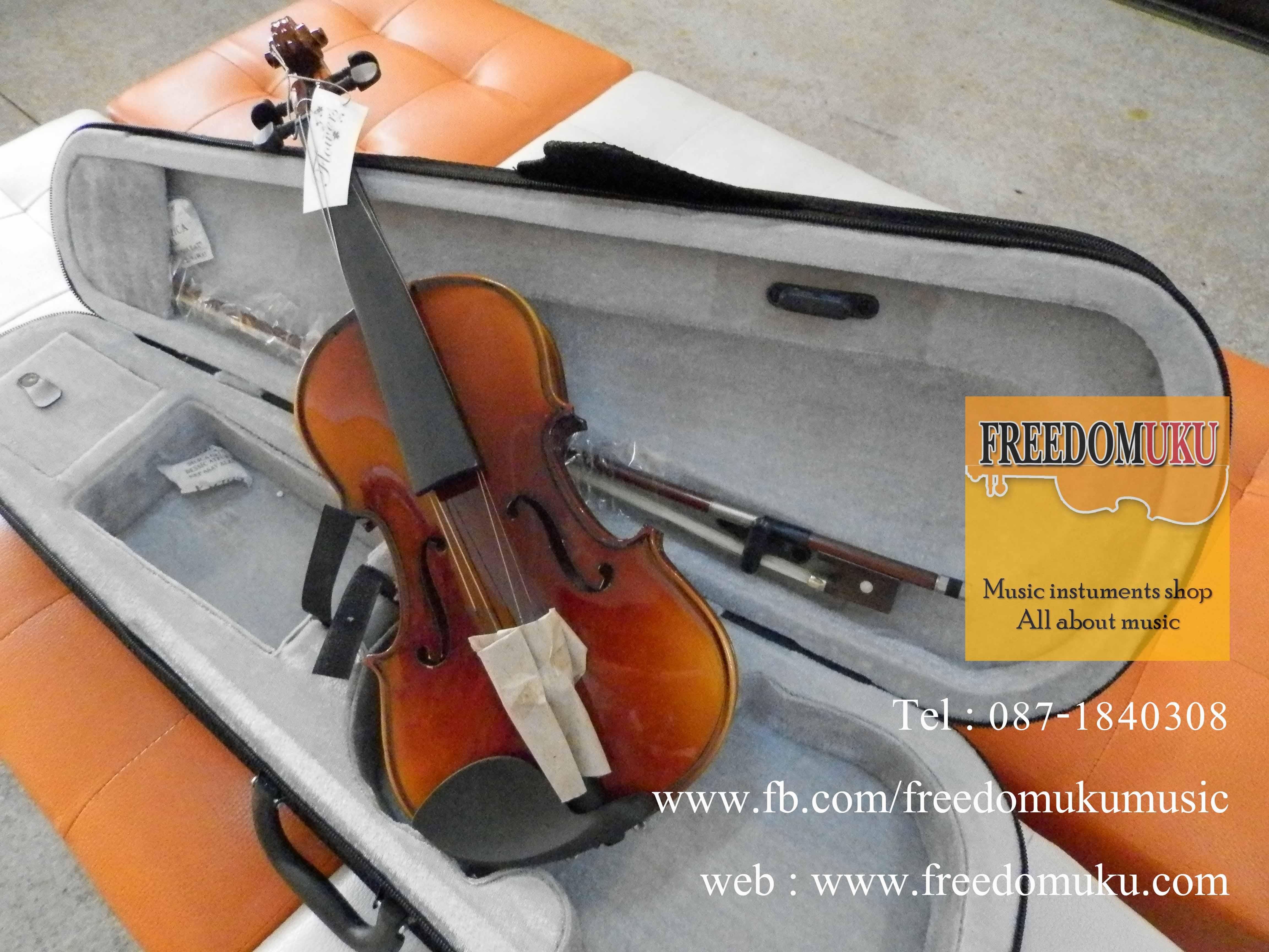 Violin size1/4
