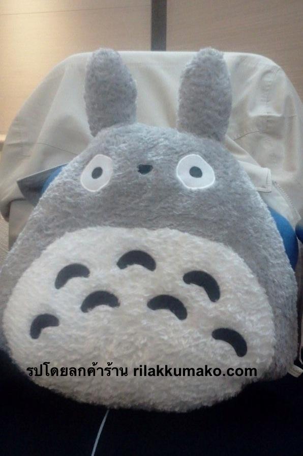 หมอนสอดมือ โตโตโร่ Totoro