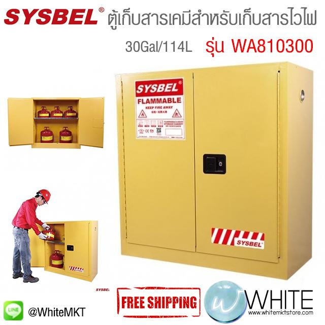 ตู้เก็บสารเคมีสำหรับเก็บสารไวไฟ Safety Cabinet|Flammable Cabinet (30Gal/114L) รุ่น WA810300