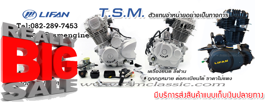 TSM ENGINE