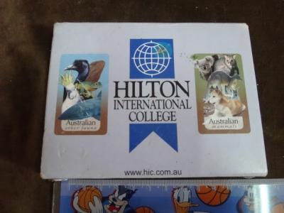 Hilton international college