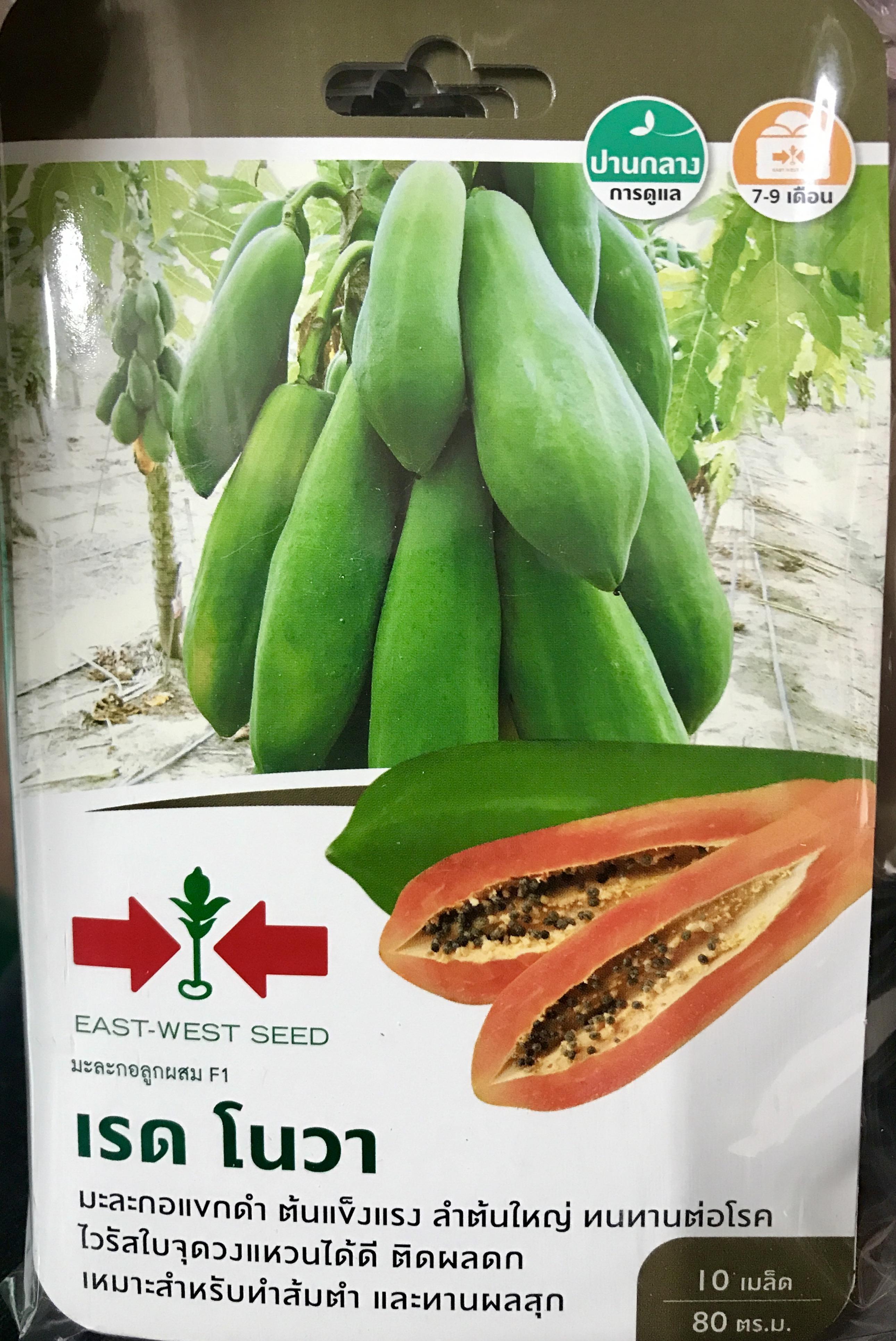 มะละกอแขกดำเรด โนวา(10เมล็ด)
