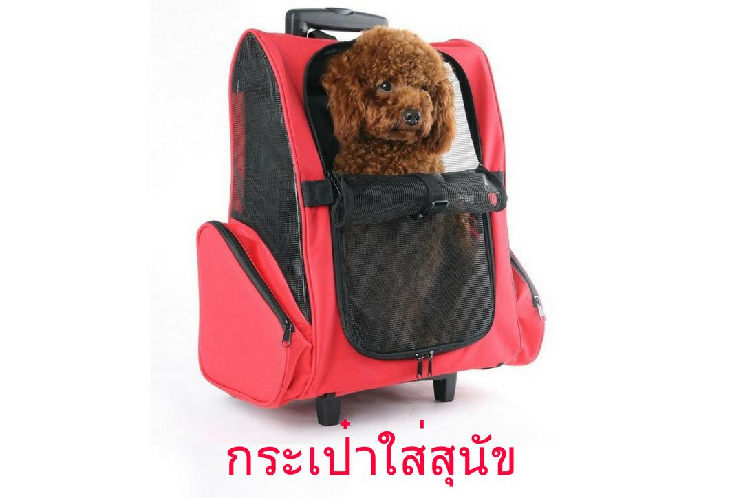 กระเป๋าใส่สุนัข